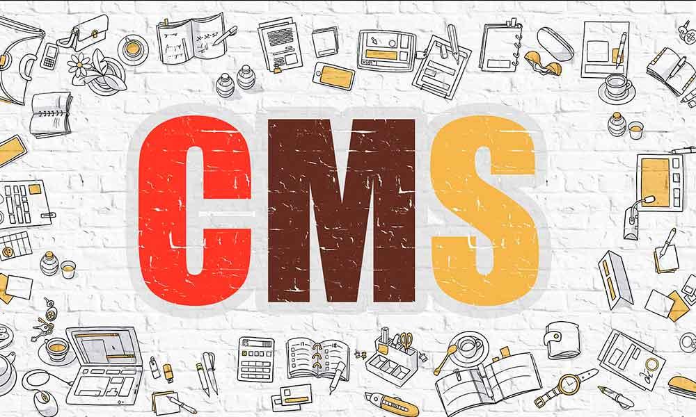 ¿Cuáles son los CMS más utilizados hoy en día?