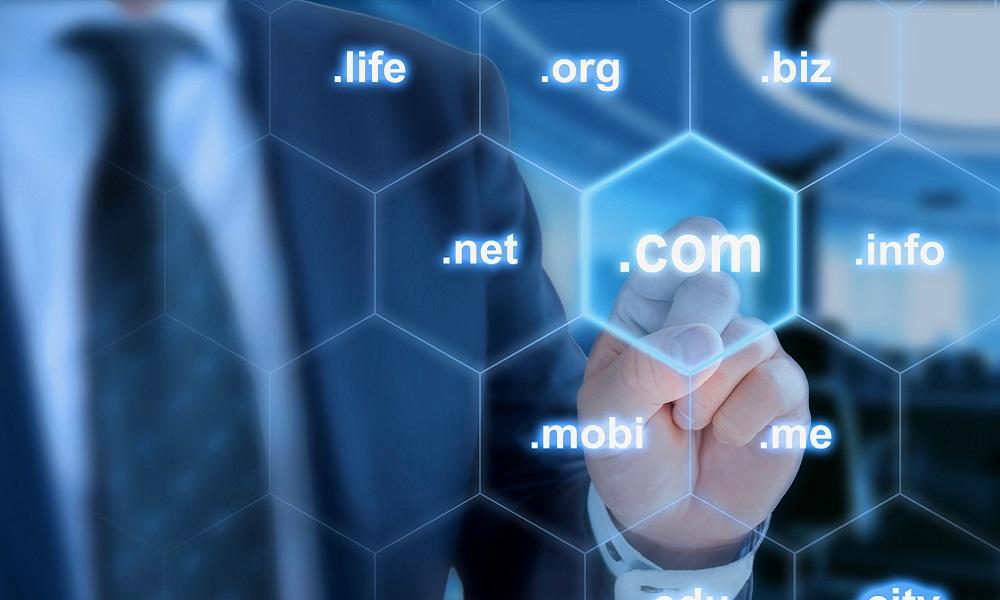 Dominio web significado