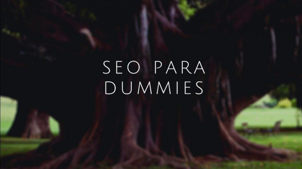 seo-dummies